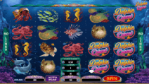 Dolphin-Quest1-300x169