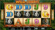 wild orient slot screenshot small